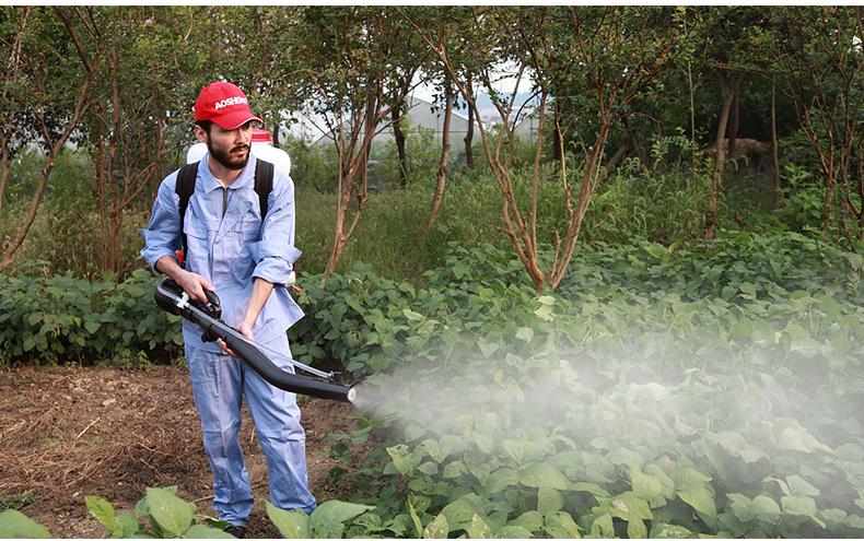 背负式汽油施肥机器 喷雾机喷粉机打药机 颗粒播种农用撒肥机产品使用场景5