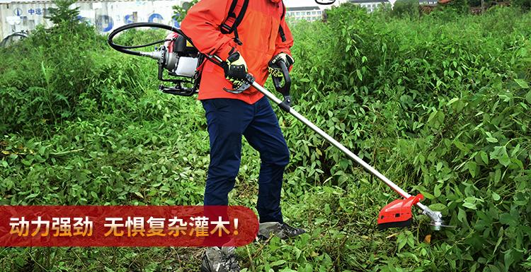 割草机 四冲程背负式 汽油家用割灌机 农用收割打草 除草机产品使用3