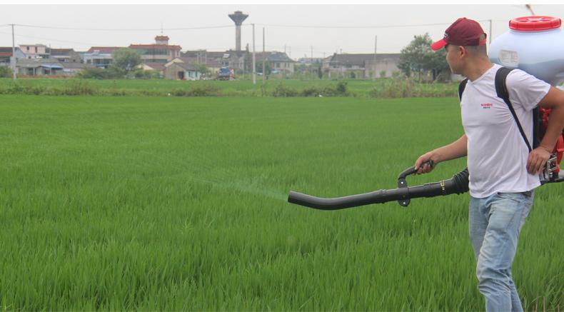背负式汽油施肥机器 喷雾机喷粉机打药机 颗粒播种农用撒肥机产品使用场景3