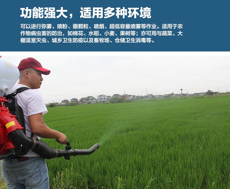 背负式汽油施肥机器 喷雾机喷粉机打药机 颗粒播种农用撒肥机产品图片2