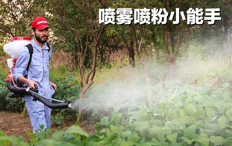 背负式汽油施肥机器 喷雾机喷粉机打药机 颗粒播种农用撒肥机产品图片1