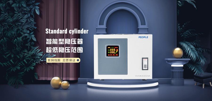 人民电器稳压器SVCIII-2000W家用电源保护海报说明