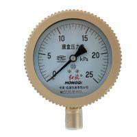 红旗仪表 膜盒压力表 千帕表YE-100天然气25 40 60kpa