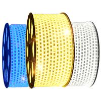 德力西LED柔性霓虹灯带 灯珠贴片LED软条灯3528 客厅节能长条灯带5730